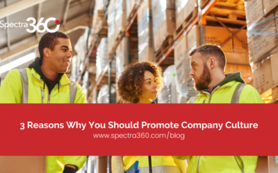 3 Reasons Why You Should Promote Company Culture